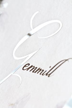 Gemmill 02